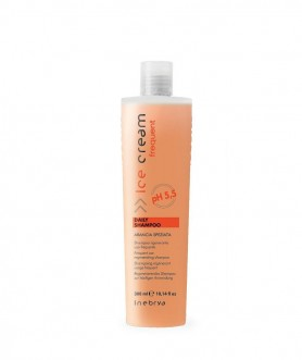DAILY Shampoo 300ml | Inebrya